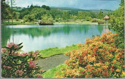 Moffat, Dumfries & Galloway - Boating Pond & Park - M&L postcard c.1960s