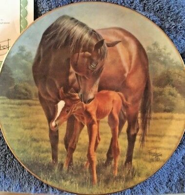 Race Horses Collector Plate First Day w/COA