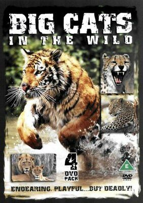 Big Cats In The Wild [2005] [DVD] -  CD OSVG The Fast Free Shipping