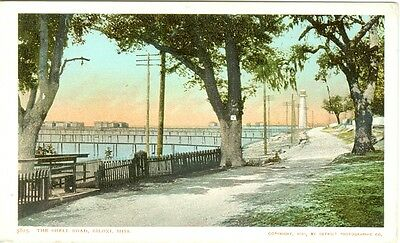 Biloxi MS 1901 View of the Old Shell Road