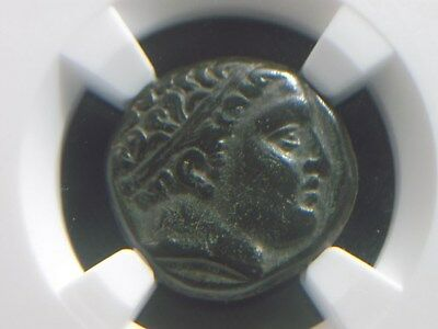 Greek coin of Philip II King of Macedonia 359-336 BC, Lifetime  NGC Ch VF 7004