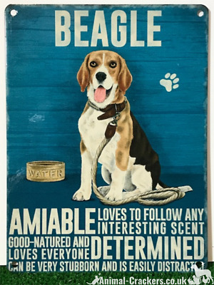 BEAGLE DOG RETRO METAL SHABBY-CHIC TIN SIGN WALL PLAQUE//FRIDGE MAGNET 34