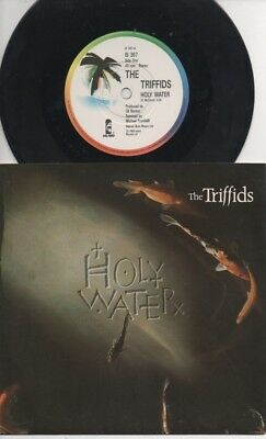 """THE TRIFFIDS  Rare 1988 UK Only 7"""" Mint OOP Island Rock P/C Single """"Holly Water"""""""