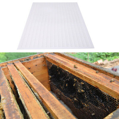 Pro Beekeeping Queen Bee Excluder Trapping Grid Net Equipment Tools 51x42cm NEW