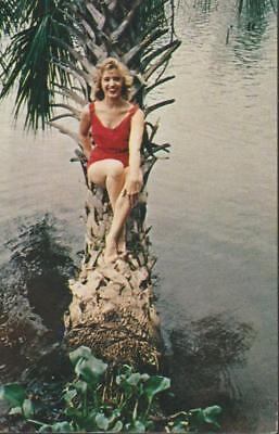 Bathing Beauty Resting Palm Tree Cool Clear Blue Lake Florida Vintage PC Rare
