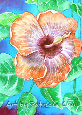 "ACEO LE Art Card Print 2.5""x3.5"" "" Open Hibiscus "" Flower Floral Art by Patricia"