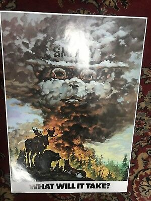 Smokey Bear Sign What Will It Take Excellent Condition