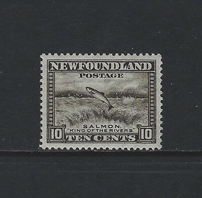 NEWFOUNDLAND - #193 - 10c SALMON LEAPING (1932-1937) MNH WELL CENTERED