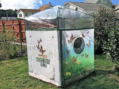 Frame It All Backyard Butterfly Nursery 4 ft x 4 ft Composite Raised Garden