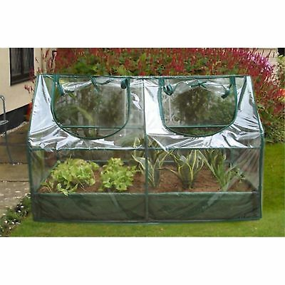 Zenport 2 Ft. W x 2 Ft. D Mini Greenhouse