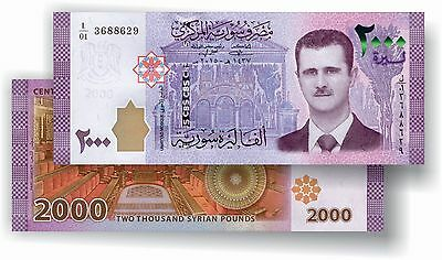 New SYRIAN BankNote bill of 2000 POUNDS 2015 / 2017 Syriennes Syria Syrie