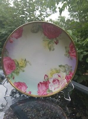 Vintage O & EG Royal Austria Hand Painted Pink & Red Roses China Plate.