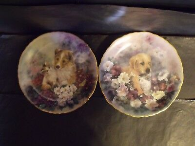 2 Lily Chang  - Friendship In Bloom Series Cat Plates