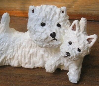 West Highland White Terrier -WESTIE- adult and pup!