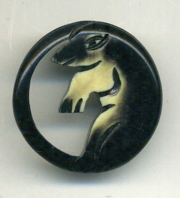 Large Pierced Celluloid Button Picturing Some Sort of Rodent in Profile