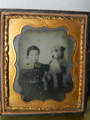 antique 5 year old Boy & His Faithful Dog 6th plate Ambrotype photo Terrier