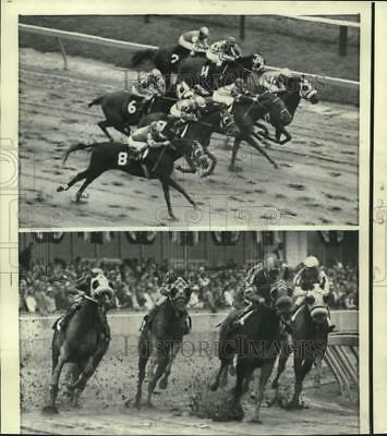 1972 Press Photo Scenes from Preakness Stakes Horse Race, Baltimore - nox46265