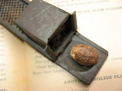 antique unique patent NUTMEG grater~early 1900's~primitive kitchen tool~old tin~