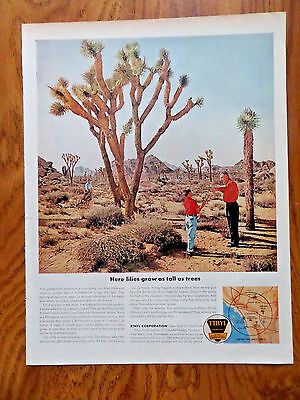 1962 Ethyl Gasoline Ad  Joshua Tree National Monument California