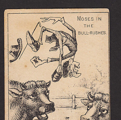 Jewish Moses in Bull-Rushes 1800's Dude Farm Freeport IL ad Victorian Trade Card