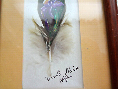 Costa Rica Painted Feather Art (Flower)