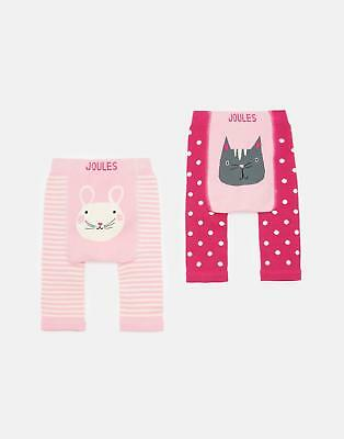 Joules 125063 Knitted Leggings in CAT