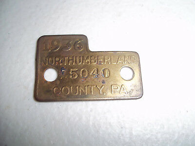 Vintage Northumberland County Pa 1936 Dog License Tag