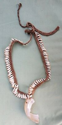 Early New Guinea Cowrie Shell and large Shell Neck adornment