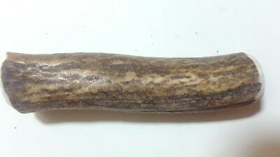 Elk Antler  4 inch pen blank wood turning Craft excellent free shipping 967