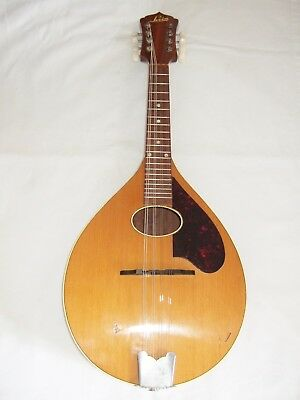 Beautiful Electro Acoustic Levin Mandolin good playing order & condition gig bag