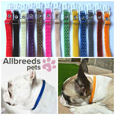 Allbreeds Puppy I.D Whelping Collars LIMITED EDITION VELVET Dog Breeding Kit Set