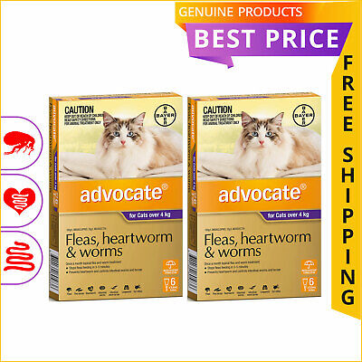 ADVOCATE PURPLE for Cats Over 4 Kg 12 Doses + 4 Doses FREE by Bayer
