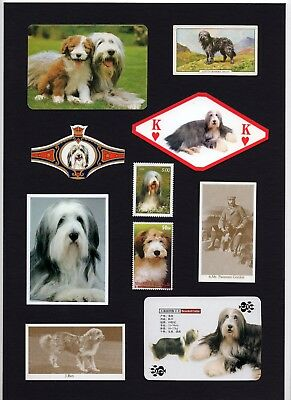 Bearded Collie Mounted Set Vintage Dog Collectable Cards Stamps And Bands
