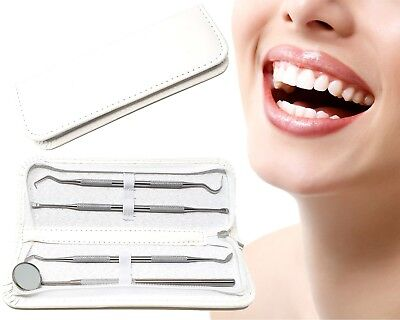Professional 4 Piece Dental Hygiene Oral Care Kit Plaque Remover Tooth Set Case