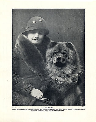 Chow Chow Lady And Her Named Dog Original Print Page From 1934