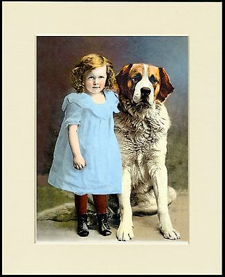 Saint Bernard And Little Girl In A Blue Dress Dog Print Mounted Ready To Frame