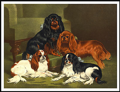 Cavalier King Charles Toy Spaniel Group Vintage Style Dog Art Print Poster