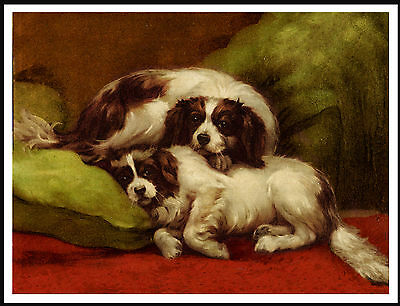 Cavalier King Charles Toy Spaniel Dogs Sleeping Vintage Style Dog Print Poster