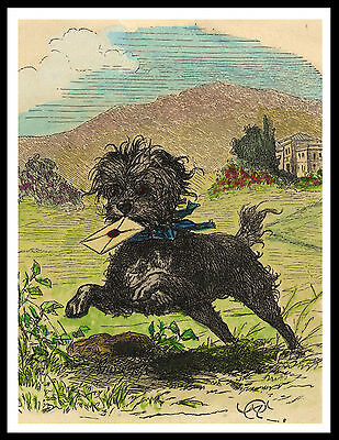 Affenpinscher Carrying A Letter Lovely Vintage Style Dog Print Poster