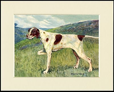 Pointer At Work Dog Print Mounted Ready To Frame