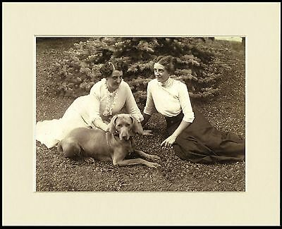 Weimaraner Edwardian Ladies And Dog Great Photo Print Mounted Ready To Frame