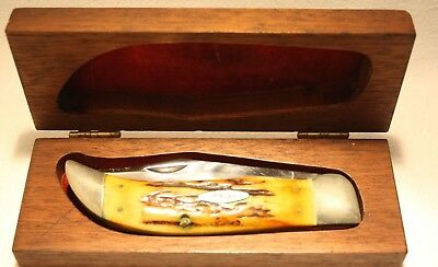 Case XX USA 5172 Prime stag Bulldog knife with collector box pre-owned