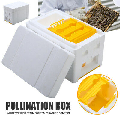 Auto Honey Beehive Frames Beekeeping Kit Bee Hive King Box Pollination Box