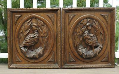 French Antique Wood Carved Oak Door Panel Bird Black Forest Hunting Pheasant.