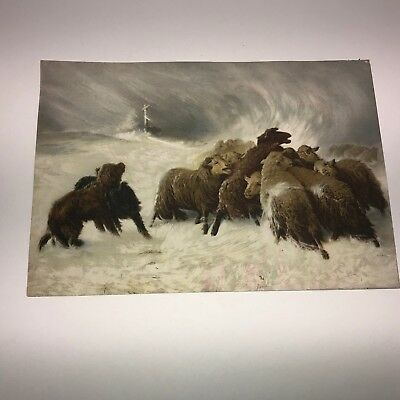 Lost In the Storm A Schenck Picture From 1900