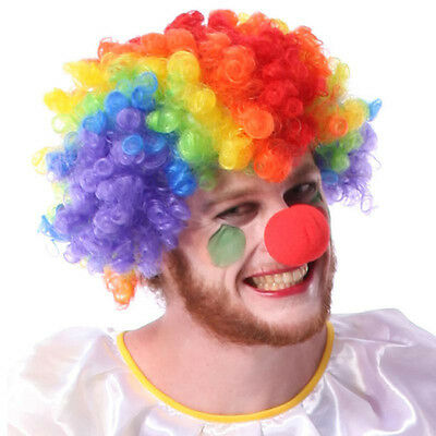 Party Disco Rainbow Afro Clown Hair Football Fan Adult Child Costume Curly Wig M