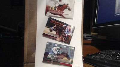 "Set of 3  California Chrome-Richest Thoroughbred- Refrigerator Magnet   3"" x 2"""