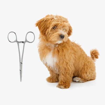 Pet Grooming Dog Straight Hemostat Forcep Tweezer Hair Puller EAR Stainless