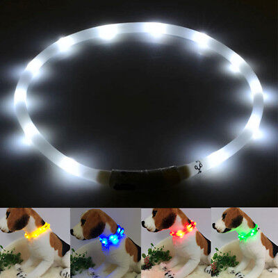 LED Light Dog Pet Collar Band Waterproof Silica Gel Safety Belt USB Rechargeable