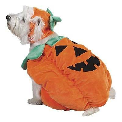 Zack & Zoey Pumpkin Pooch Dog Costume plush with hat Size Small Halloween